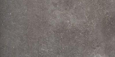 vloertegel Benelux Dark 30x60 rett