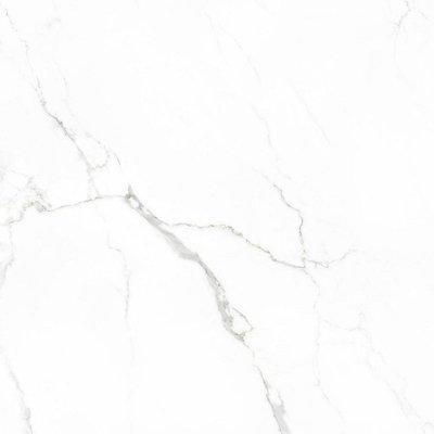 vloertegel Statuario glans 60x60 rett