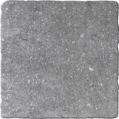 vloertegel Bluestone Gris 20x20 getrommeld